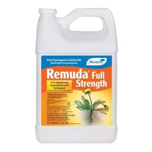 Remuda 1 gal. Concentrated Herbicide
