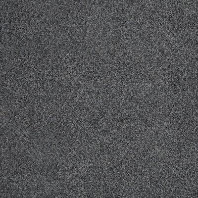 Chastain I - Color Boze Texture 12 ft. Carpet