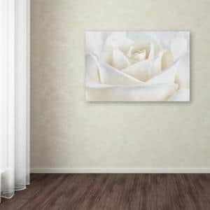 30 in. x 47 in. ''Pure White Rose'' by Cora Niele Printed Canvas Wall Art