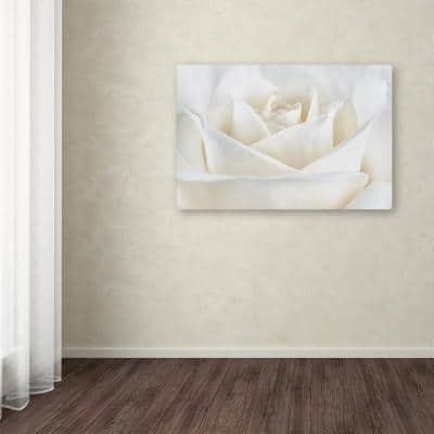 """30 in. x 47 in. """"Pure White Rose"""" by Cora Niele Printed Canvas Wall Art"""