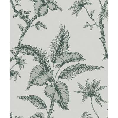Cival Green Fern Trail Strippable Wallpaper Covers 57.5 sq. ft.
