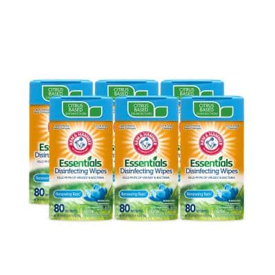 80-Count Renewing Rain Disinfecting Wipes (6-Pack)