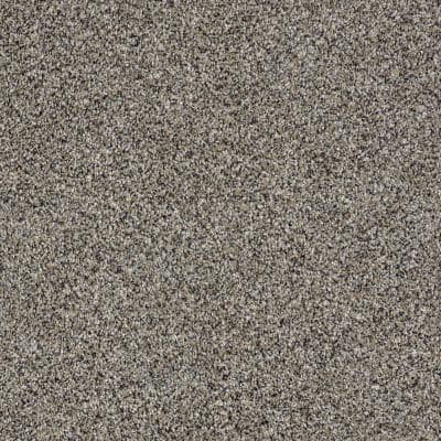 Tradeshow II - Color Old Fort Texture 12 ft. Carpet