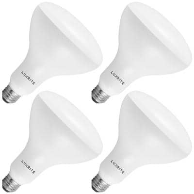 85-Watt Equivalent BR40 Dimmable LED Light Bulbs Damp Rated 6500K Daylight White (4-Pack)