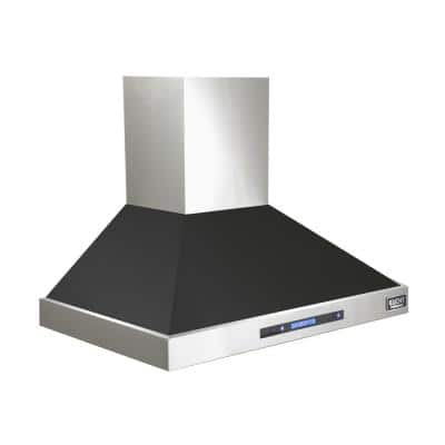Professional 36 in. 900 CFM Ducted Wall Mount Range Hood with Light in Black