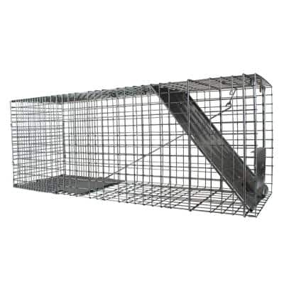Large 1-Door Professional Live Animal Cage Trap for Raccoon, Opossum, Groundhog, and Feral Cat