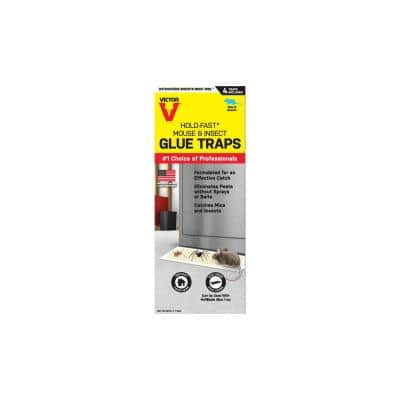 Hold-Fast Mouse and Insect Glue Traps (4-Pack)