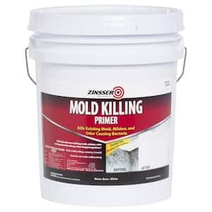 5 gal. Mold Killing Interior/Exterior Primer