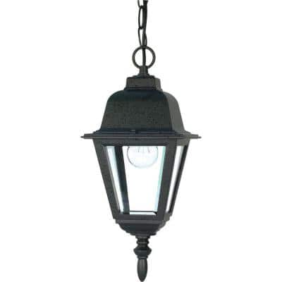 1-Light Outdoor Textured Black Hanging Lantern with Clear Glass Shade