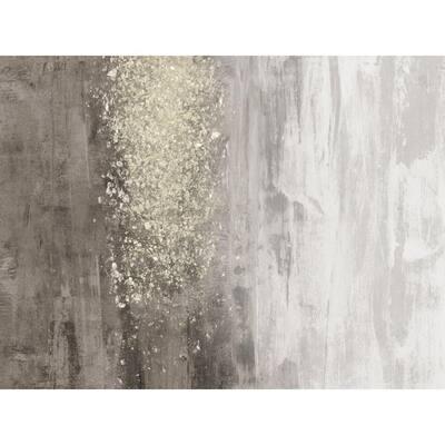 "54 in. x 72 in. ""Glitter Rain II"" by Jennifer Goldberger Canvas Wall Art"