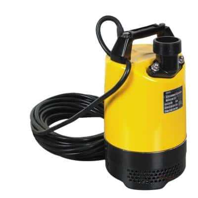 1.0 HP 2 in. Electric Submersible Utility Pump