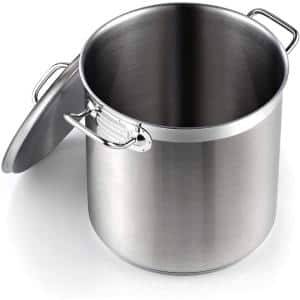 Professional Grade 11 qt. Stainless Steel Stock Pot with Lid