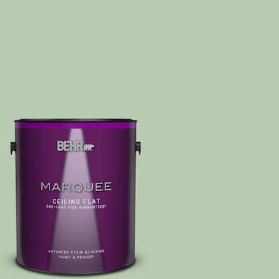1 gal. #S400-3 Healing Aloe One-Coat Hide Ceiling Flat Interior Paint & Primer