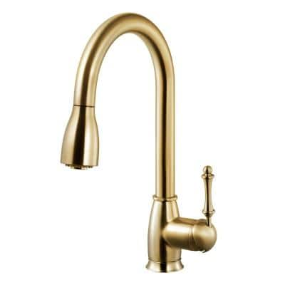 Camden Single-Handle Pull Down Sprayer Kitchen Faucet with CeraDox Technology in Brushed Brass