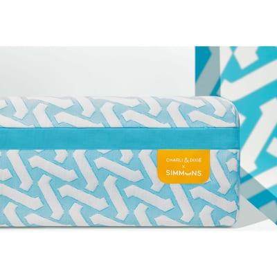 CHARLI & DIXIE 10 in. Medium Memory Foam Tight Top Queen Mattress in a Box SP