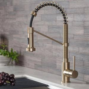 Bolden Single-Handle Pull-Down Sprayer Kitchen Faucet with Dual Function Sprayhead in Brushed Gold