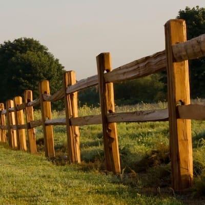 4 in. x 4 in. x 10 ft. Western Red Cedar Wood Fence Picket