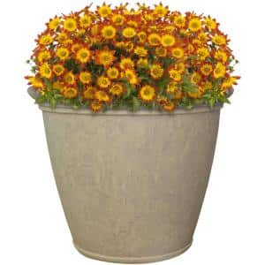24 in. Beige Anjelica Poly Single Flower Pot Planter