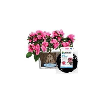 Hydrobox - 5.9 in. Smart Plant Watering, HDPE, PES