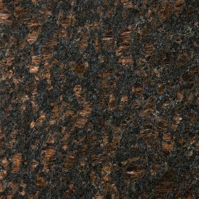 Granite Tan Brown Polished 12.01 in. x 12.01 in. Granite Floor and Wall Tile (1 sq. ft.)