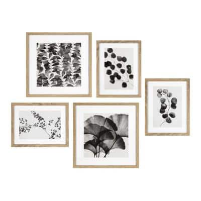 Black and White Florals Framed Wall Art Set 15 in. x 15 in.