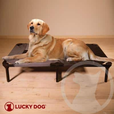 Large 42 in. Gray Elevated Pet Bed Comfort Cot