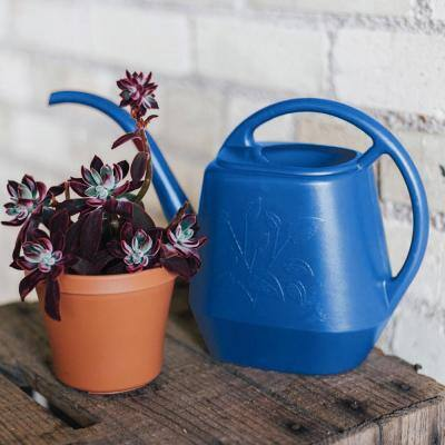 Aqua Rite 144 oz. Classic Blue Plastic Watering Can