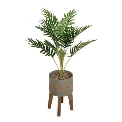 3.15 ft. Palm in Cement Planter on Wood Stand