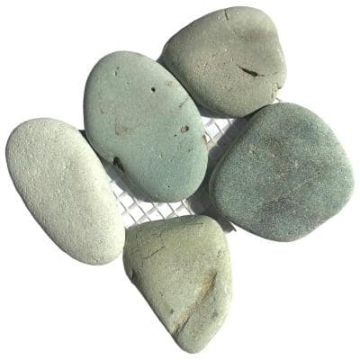 River Rock Turquoise Natural Stone Pebble Mosaic Tile - 3 in. x 4 in. Tile Sample