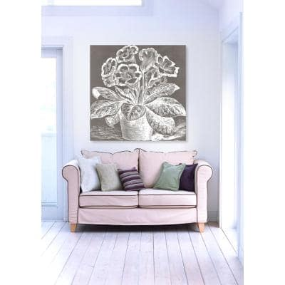 12 in. x 12 in. W 'Potted Primrose Woodblock' by The Oliver Gal Artist Co. Printed Framed Canvas Wall Art