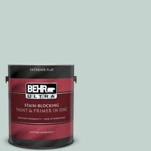 1 gal. #N430-2 Natures Reflection Flat Exterior Paint and Primer in One