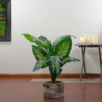 """36"""" Artificial Green and Ivory Variegated Leaf Dieffenbachia Potted Plant"""