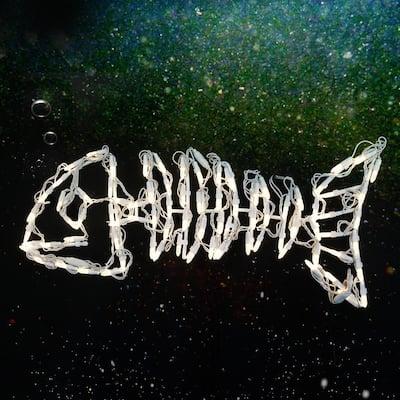 28 in. LED Skeleton Fish