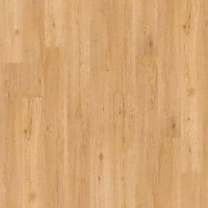 Wisteria 6 mil Nougat 6 in. x 48 in. Glue Down Vinyl Plank Flooring (53.93 sq. ft./case)