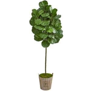 Indoor 6.5-Ft. Fiddle Leaf Artificial Tree in Farmhouse Planter
