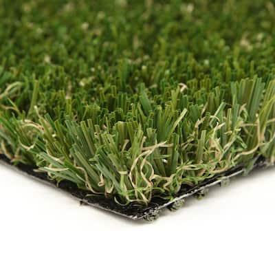 PET-MULTIPLAY 12 ft. Wide x Cut to Length Artificial Grass
