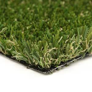 Pet-Muliplay 12 ft. Wide x Cut to Length Artificial Grass