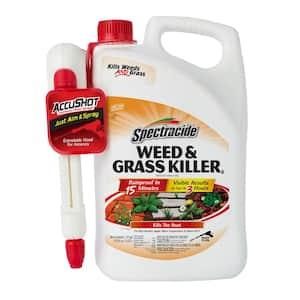 Weed and Grass Killer 1.3 gal. Accushot Sprayer