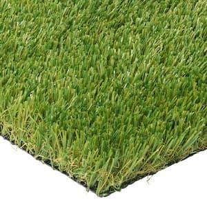 Pet 6 ft. x 7.5 ft. Artificial Grass