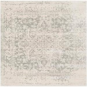 Demeter Gray 6 ft. 7 in. Square Area Rug