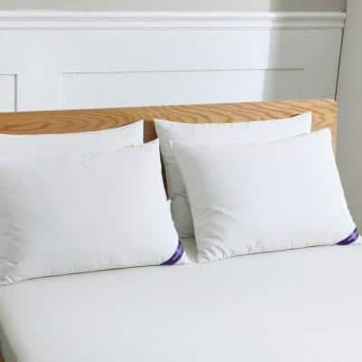 Cotton Silver Duck Feather Jumbo Pillows (4-Pack)