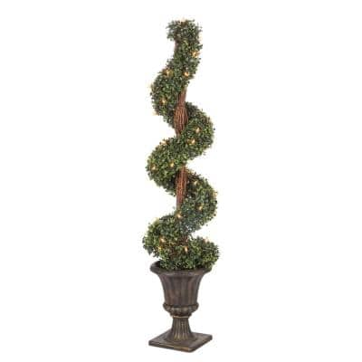 4 ft. Potted Boxwood Spiral Tree
