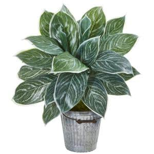 24 in. Silver Aglaonema Artificial Plant in Decorative Bucket (Real Touch)