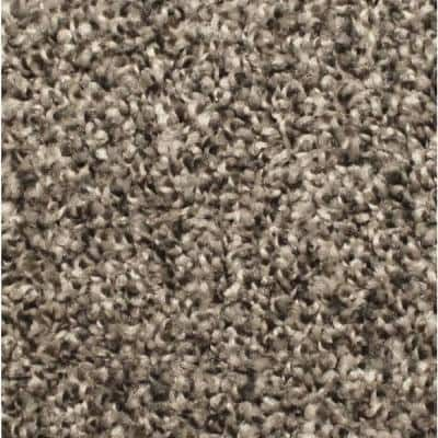 Lake View - Color Dovetail 12 ft. Texture Multi-Colored Carpet