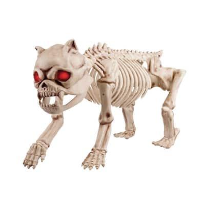 20 in. Animated LED Halloween Skeleton Dog