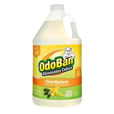1 Gal. Citrus Disinfectant, Laundry and Air Freshener, Mold and Mildew Control, Multi-Purpose Concentrate