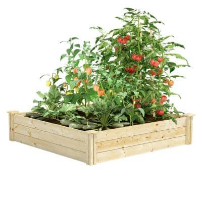 4 ft. x 4 ft. x 10.5 in. Original Pine Raised Garden Bed