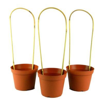 16 in. Bamboo U Trellis Plastic Planter Set (3-Pack)