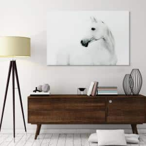 48 in. x 32 in. ''Blanco Stallion Horse'' Frameless Free Floating Tempered Glass Panel Graphic Art Wall Art