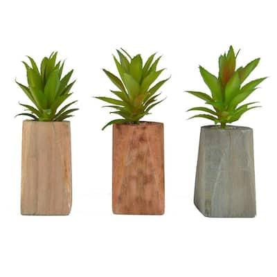 Artificial Succulent Grass in Planter (Set of 3)